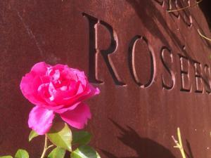 Les Rosées (14 of 74)