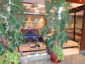 Radisson Blu Pune Hinjawadi, Отели  Пуне - big - 43
