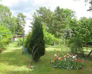 Ferienhaus Himmelpfort SEE 8861 - Dannenwalde