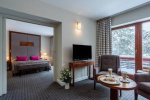 Hotel Spa Dr Irena Eris Krynica Zdrój, Hotely  Krynica Zdrój - big - 49