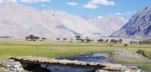 Tsashung Homestay,Hunder Nubra,Leh Ladakh, Проживание в семье  Лех - big - 23