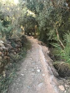 Riad Dar Bab Todra, Riads  Tinghir - big - 79