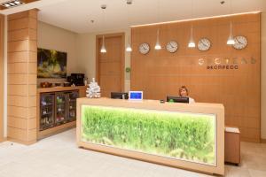 Airhotel Express - Pestova
