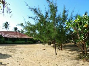 Paraíso Carnaubinha, Prázdninové domy - Luis Correia