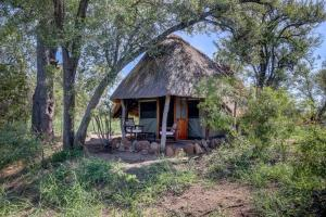 Pungwe Safari Camp, Chaty  Rezervace Manyeleti - big - 4