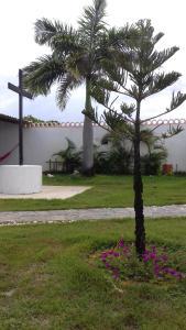 Casa Ampla Praia do Abaís, Дома для отпуска  Эстансия - big - 6