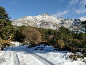 Complejo Turístico Las Cañadas, Casas de Campo y Bungalows, Villaggi turistici  Baños de Montemayor - big - 30