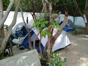 Camping e hostel do tatu