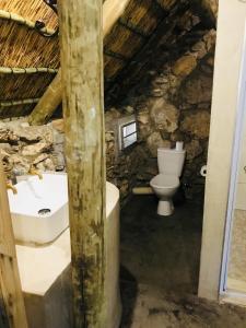 Sasa Safari Camp, Chaty v prírode  Outjo - big - 6