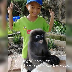 Rai Lung Tui Homestay, Magánszobák  Pracsuap Khirikhan - big - 82