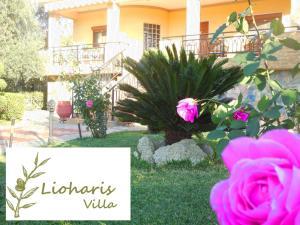 obrázek - Lioharis Villa