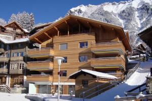 Chalet Am Acher 3 - Apartment - Wengen