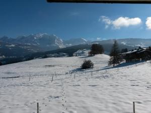Rez de chaussée très calme vue Mont-Blanc - Apartment - Combloux