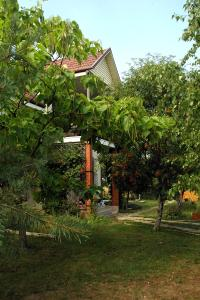 Dacha u Morya Bugaz - Hrybivka