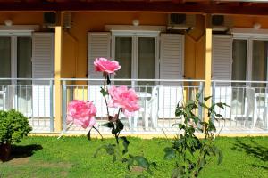 Hostels e Albergues - Rantos Apartments