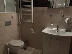 Renovated apartment in Opole