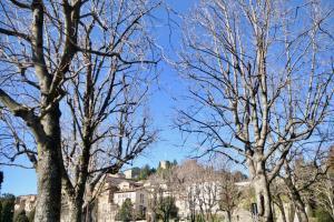 GreatEscapes - Città Alta, Apartmány  Bergamo - big - 5