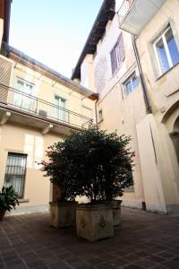 GreatEscapes - Città Alta, Apartmány  Bergamo - big - 14