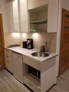 Apartment Rajska