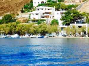Alexandros Hotel, Отели  Грикос - big - 10