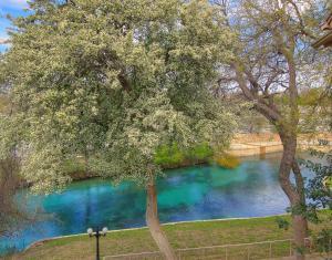 obrázek - Comal River Condos 307