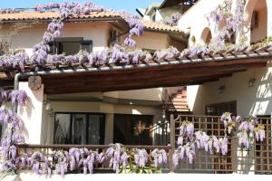 Hotel Galli, Hotels  Campo nell'Elba - big - 48