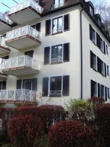 شقة في اي بي بادن بادن - بادن بادن