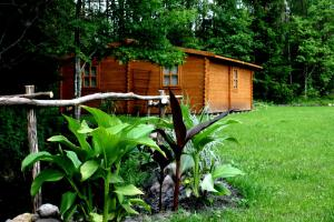 Camping Bušas