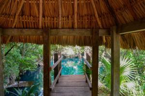 obrázek - Cenote Popol Vuh