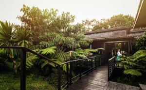 One&Only Nyungwe House (6 of 17)