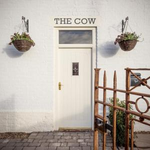 The Cow (13 of 86)