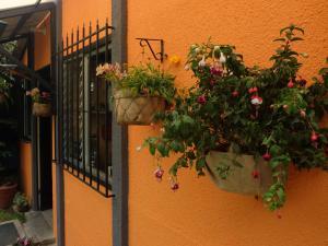 Casa Flor, Prázdninové domy  Panajachel - big - 23