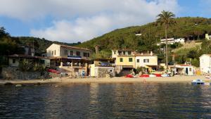 Appartamento il Sottomarino, Apartmanok  Portoferraio - big - 11