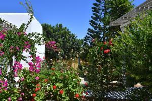 Surfing Beach Village Paros, Hotel  Santa Maria - big - 94