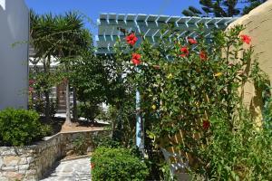 Surfing Beach Village Paros, Hotel  Santa Maria - big - 90