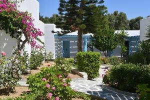 Surfing Beach Village Paros, Hotel  Santa Maria - big - 86