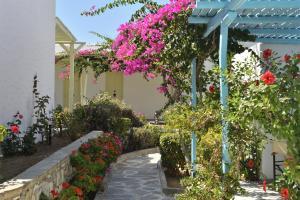 Surfing Beach Village Paros, Hotel  Santa Maria - big - 67