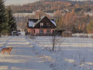 Chata Pod Ryczywołem