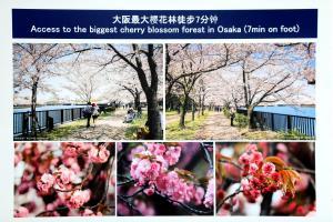 Osaka Umeda Yuan Hostel, Hostels  Osaka - big - 62