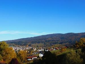 Gästehaus Falkenau Urlaub mit Hund, Hotely  Frauenau - big - 17