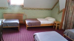 Hôtel Oberland, Hotely  Le Bourg-d'Oisans - big - 37