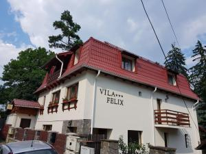 Vila Felix, Affittacamere  Sinaia - big - 83