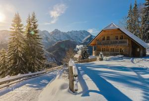"Holiday chalet ""Alpine dreams"""