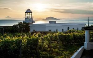 Capofaro Malvasia and Resort (38 of 66)