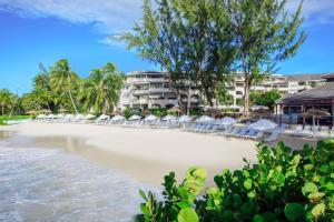 Bougainvillea Barbados (1 of 40)