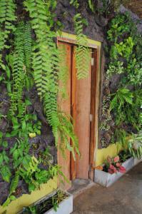 Visit Natural Detox Resort, Hotels  Strand Lamai - big - 51