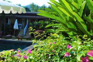 Visit Natural Detox Resort, Hotels  Strand Lamai - big - 11