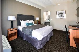 City Center Inn and Suites