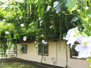 Yi He Golden Homestay, Prázdninové domy  Mizhan - big - 33