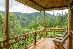 Ichumbi Gorilla Lodge, Лоджи  Kisoro - big - 31